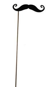 Усы на палочке с завитушками